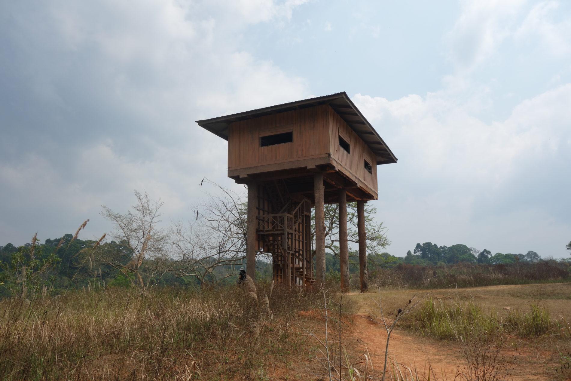カオヤイ国立公園 Wild life watching Tower