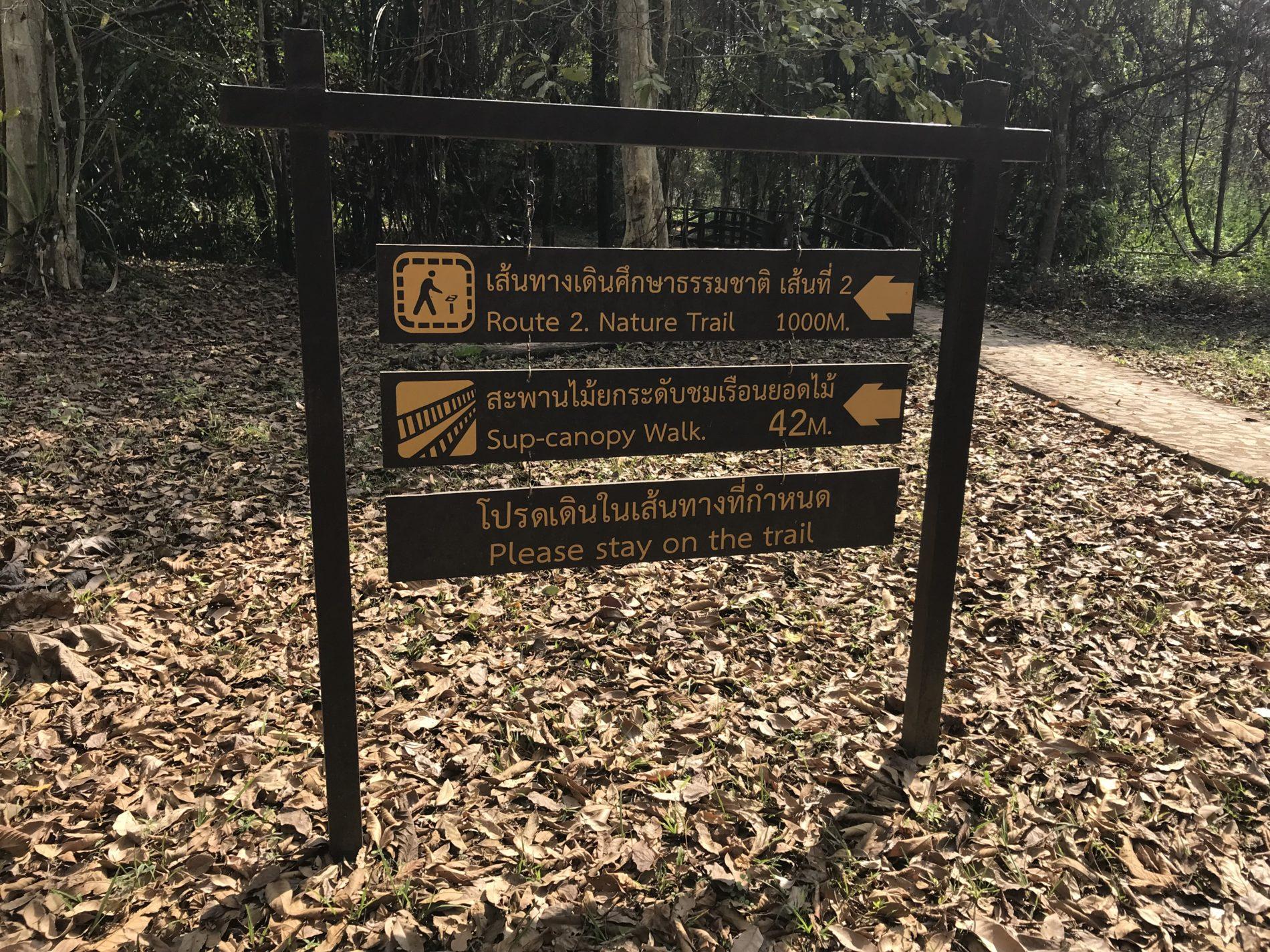 サイヨーク公園 CANOPY WALK