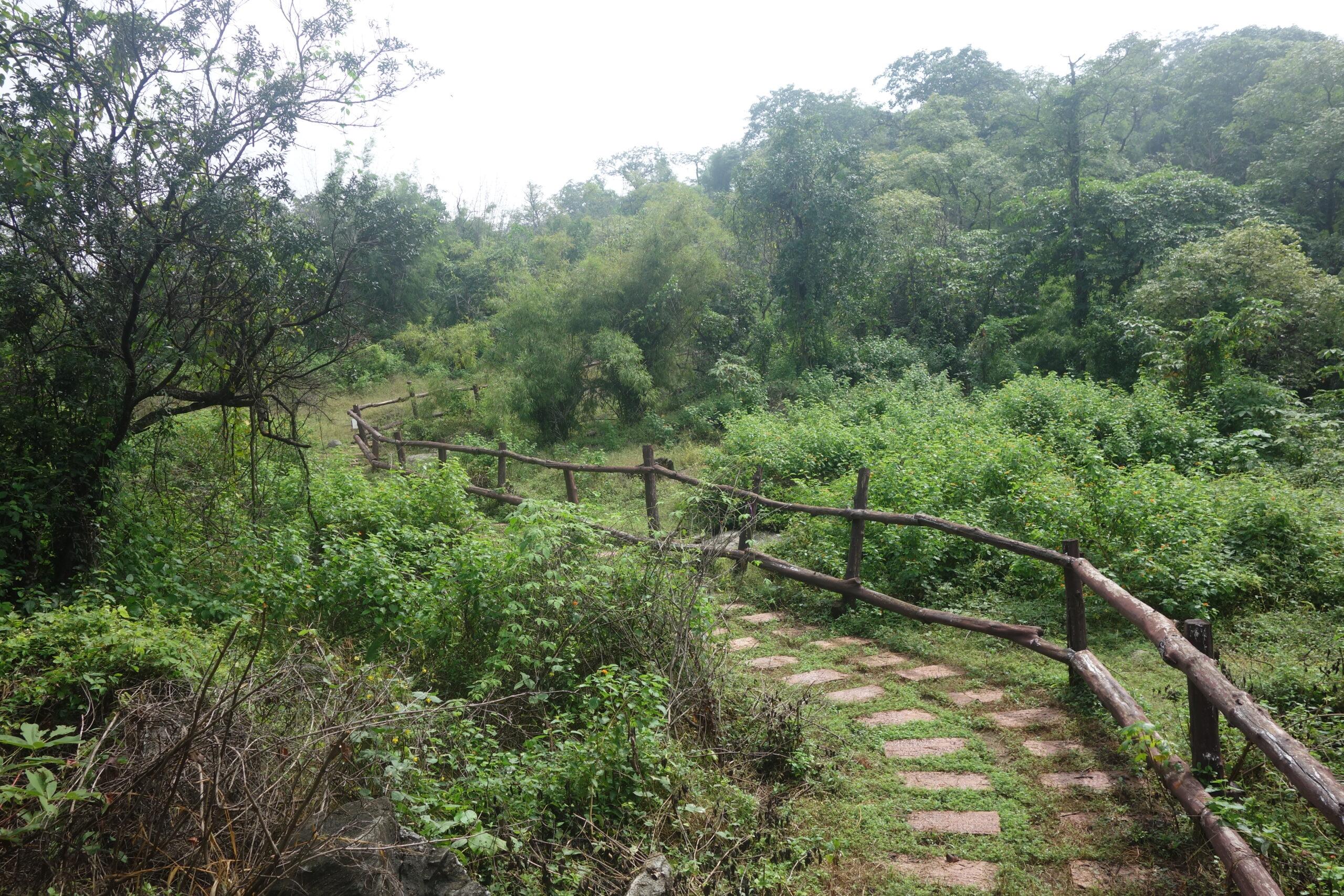Phu Hang Nak Rock Park
